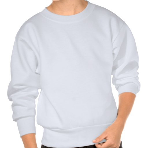 Pointless stuff pull over sweatshirt