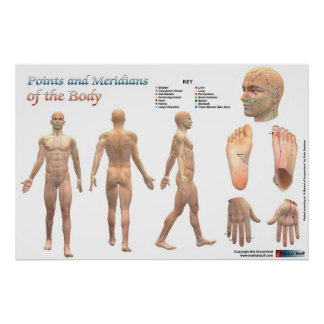 Points and meridians of the body poster
