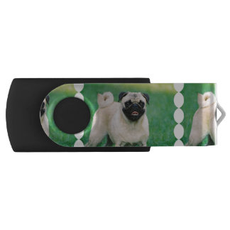 Poised Pug USB Flash Drive