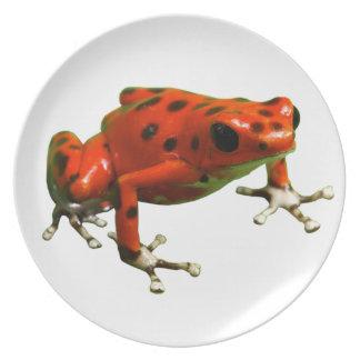 Poison Dart Frog Plate