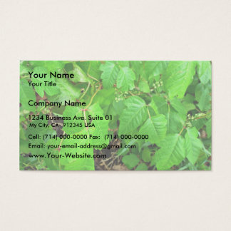 Poison ivy business card