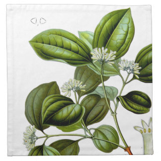 Poison nut tree vintage illustration printed napkin