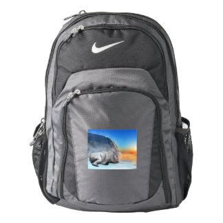 pol backpack