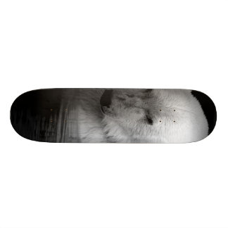 Polar Baer Skate Decks