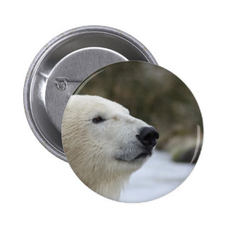 Polar Bear 2 Inch Round Button