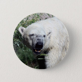 Polar Bear Button