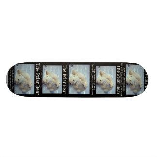 Polar Bear Cartesian Bear Skate Board Deck