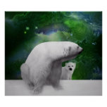 Polar Bear, cub and Northern Lights aurora Poster