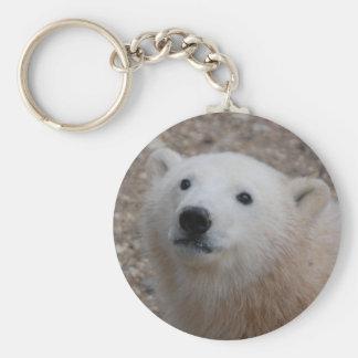 Polar Bear Cub Basic Round Button Keychain