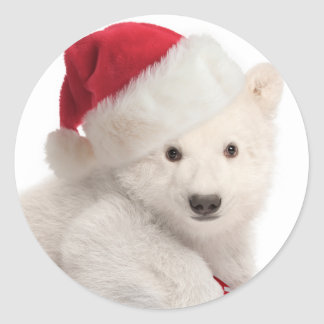 Polar Bear Cub Christmas Stickers