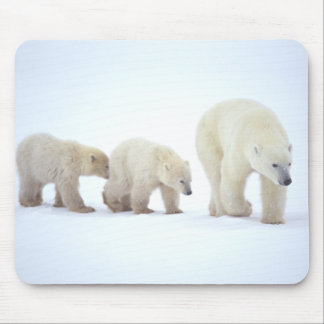Polar Bear Family Mousepad