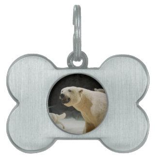 Polar Bear Grin Pet ID Tags