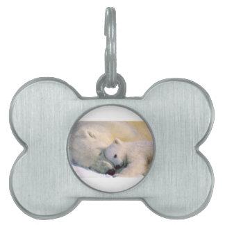 Polar Bear Hugs Pet ID Tag