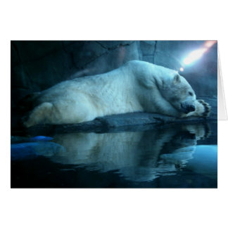 Polar Bear In Prayer 2 Blank Card