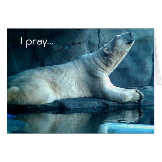 Polar Bear In Prayer Birthday Card