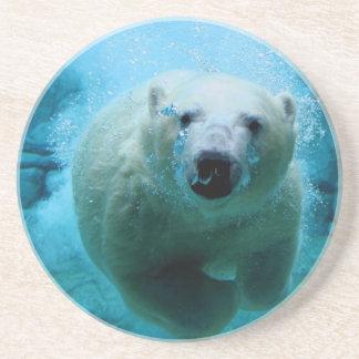 Polar Bear In Water Beverage Coasters