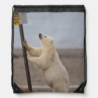 Polar bear leans on sign for buried pipe drawstring bags