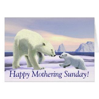 Polar Bear - Mama Nose Best Cards