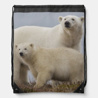 Polar bear mother and her cub rest in the tundra drawstring bags
