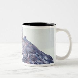 Polar bear on top of a bowhead whale jaw bone, Two-Tone coffee mug