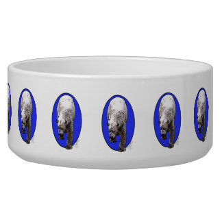 Polar Bear Pet Water Bowl