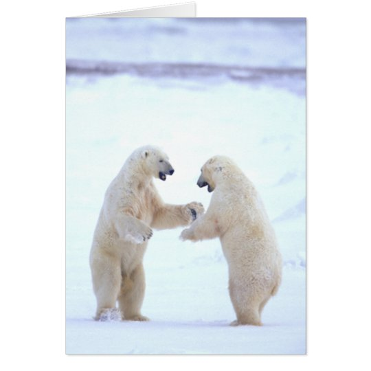Polar Bear Play Card