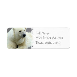Polar Bear Return Address Label