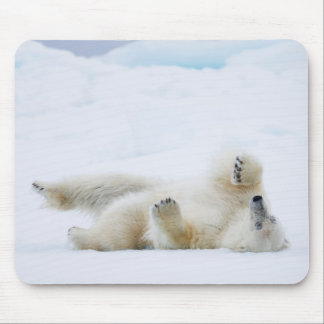 Polar bear rolling in snow, Norway Mouse Pad