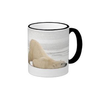 Polar bear scratching itself on frozen tundra ringer coffee mug