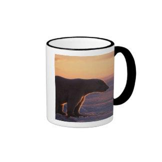 Polar bear silhouette, sunrise, pack ice of ringer coffee mug