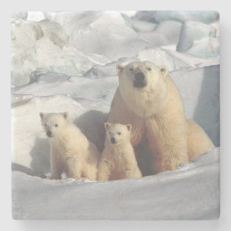 Polar Bear Stone Coaster