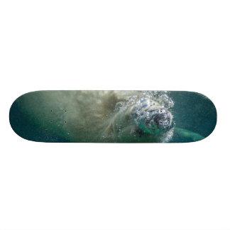Polar bear underwater skateboards