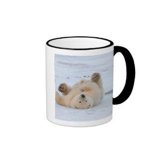 polar bear, Ursus maritimus, cub rolling 3 Ringer Coffee Mug