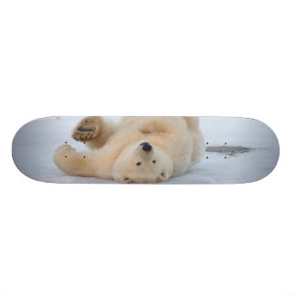 polar bear, Ursus maritimus, cub rolling 3 Custom Skateboard
