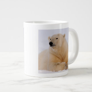 polar bear, Ursus maritimus, resting on the Large Coffee Mug