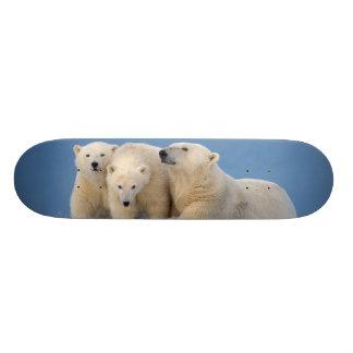 polar bear, Ursus maritimus, sow with cubs Custom Skateboard