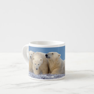 polar bear, Ursus maritimus, sow with cubs Espresso Mug