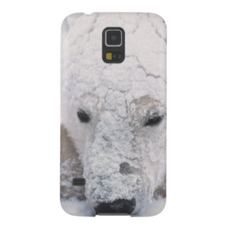 Polar Bear, Urus Maritimus, Arctic, Churchill, Case For Galaxy S5
