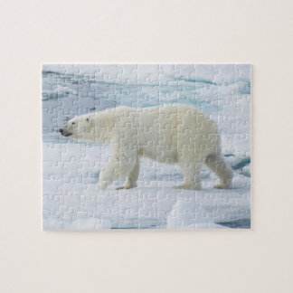 Polar bear walking, Norway Jigsaw Puzzle