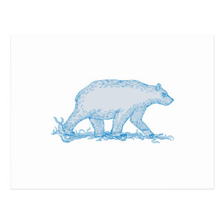 Polar Bear Walking Side Drawing Postcard