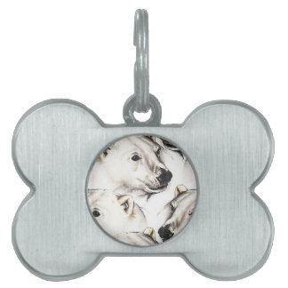 Polar Bears Pet ID Tag