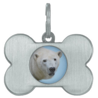 Polar bears profile pet name tag
