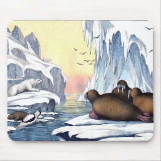 Polar Bears, Walrus, And Seals Mouse Pad