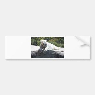 Polar Beer Bumper Sticker