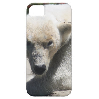 Polar Beer Case For The iPhone 5