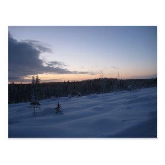Polar night postcard