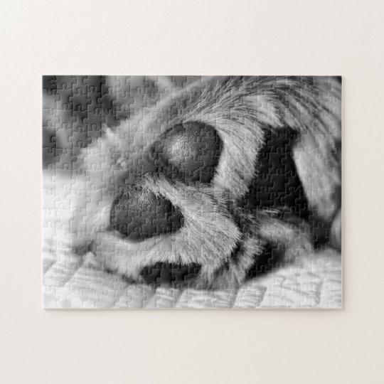 Polar Paws Golden Retriever Jigsaw Puzzle