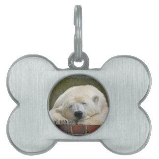 PolarBear20150501 Pet Tags