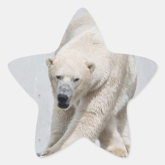 Polarbear walking star sticker