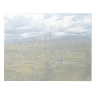 Polebridge Area Burnout Glacier National Park Notepads